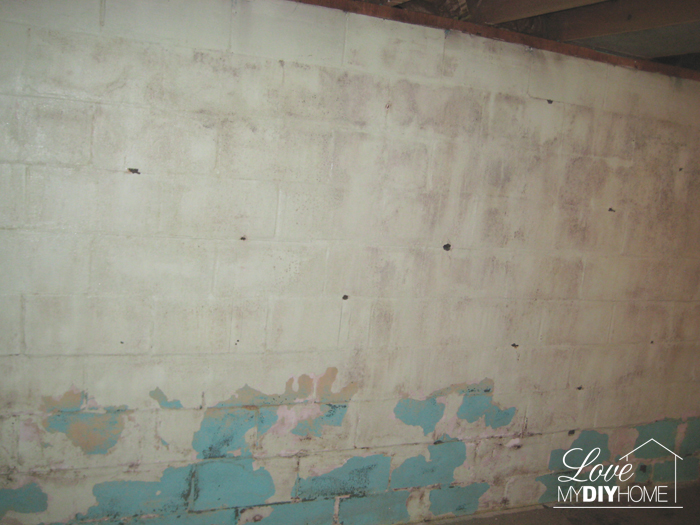 Basement Reno - You never know what is behind those walls!Basement Reno - You never know what is behind those walls!